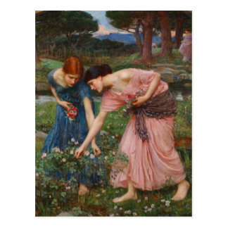 Gather Ye Rosebuds by John W. Waterhouse Postcard