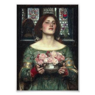 Gather Ye Rosebuds Art Photo