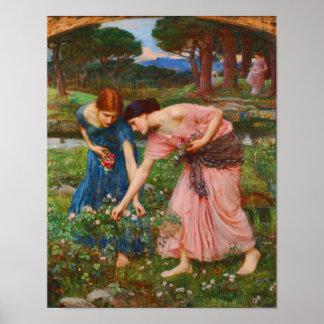 Gather Ye Rosebuds While Ye May by John Waterhouse Poster