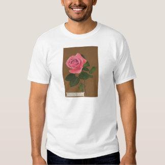 Gather Ye Rosebuds While Ye May  Vintage Postcard T-shirts
