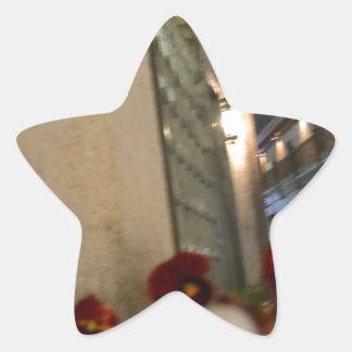 Gatinburg, TN 742.JPG Star Sticker