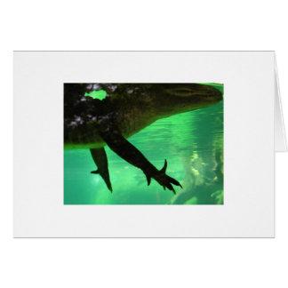Gator Card
