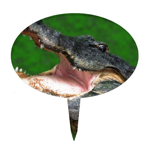 Gator Chomp Cake Toppers