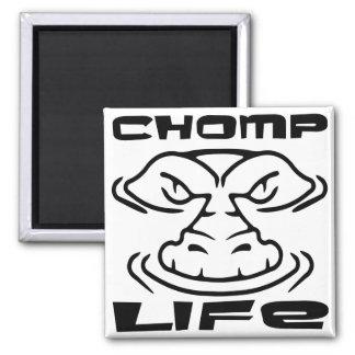 Gator Chomp Life Square Magnet