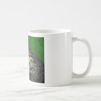 Gator Chomp Mug