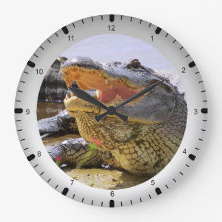 Gator Large Clock