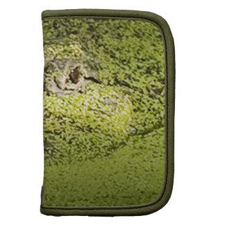 Gator Lurking in Duckweed - Nature Photograph Folio Planner