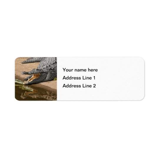 Gator Portrait  with Mouth Wide Open Return Address Label