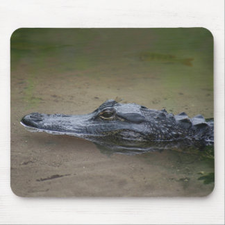 Gator Resting Mouse Pad