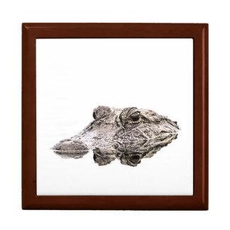Gator Stone Gift Box