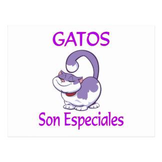 Gatos Especiales Postcard