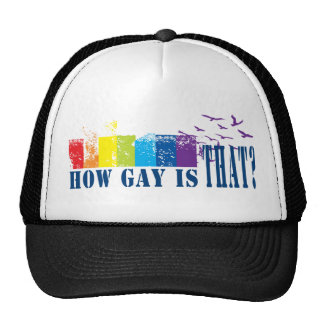 Gay Flag Hat- How gay Is That? Mesh Hat