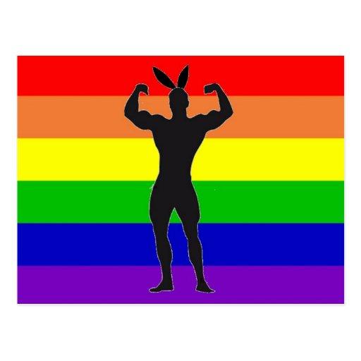 Gay Gym Bunny Pride Post Card