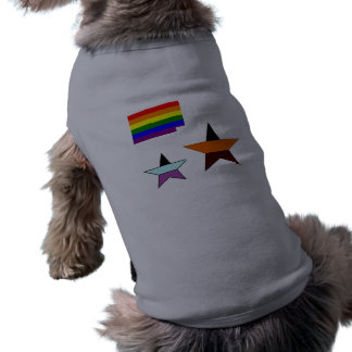 gay-pride-flag-738850, vvv, star shirt
