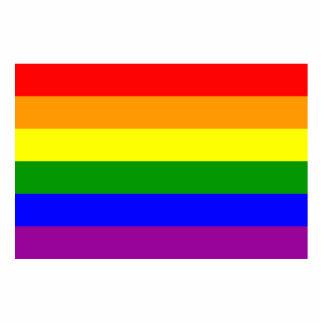 Gay Pride Flag / Rainbow Flag Photo Cut Out