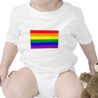 Gay Pride Flag / Rainbow Flag Creeper