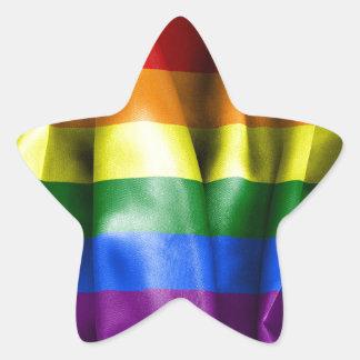 Gay Pride Flag Star Sticker