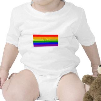 Gay Pride Flag Baby Creeper