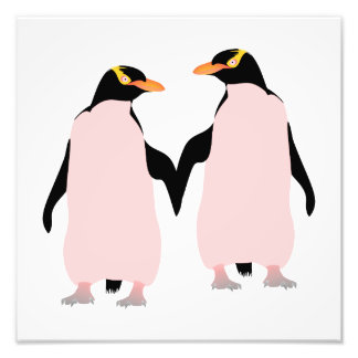 Gay Pride Lesbian Penguins Holding Hands Photographic Print