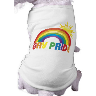 Gay Pride Rainbow Sun Shirt