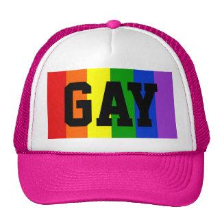 Gay Rainbow Flag Ball Cap - Pink