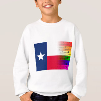 Gay Rainbow Wall Texan Flag Sweatshirt