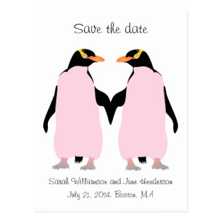 Gay Save the date, pink penguins Postcard
