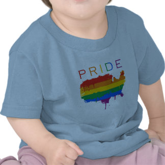 Gaymerican Pride T Shirt