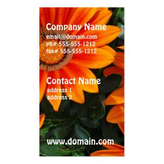 Gazania Business Cards