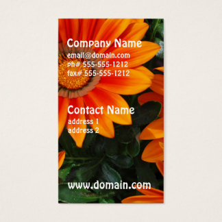 Gazania Business Cards