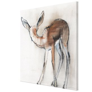 Gazelle Fawn Canvas Print