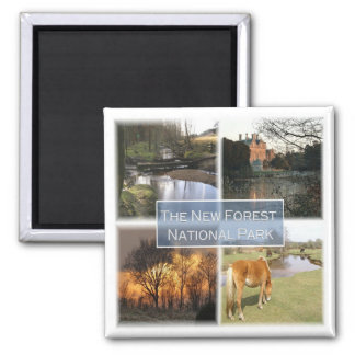 GB * England - The New Foret National Park Square Magnet