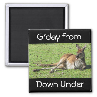 G'day from Down Under Kangaroo Magnet Square Magnet