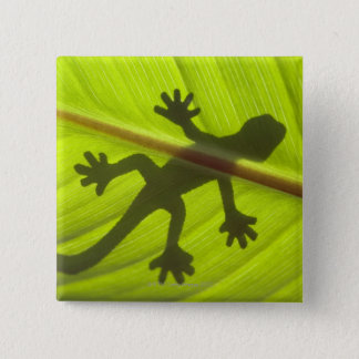 Gecko 15 Cm Square Badge