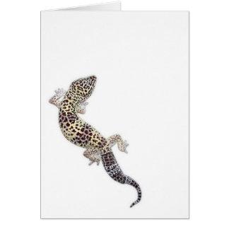 Gecko Card 01