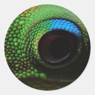 Gecko Eyeball Classic Round Sticker