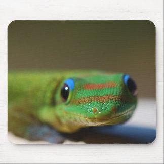 Gecko Friend Mouse Mat