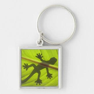 Gecko Key Ring