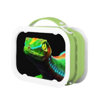 Gecko Lizard Rainbow Colors lunchbox