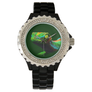 Gecko Lizard Rainbow Colors Watch