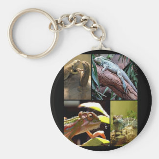 Gecko lizards and Chameleons Basic Round Button Key Ring