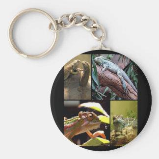 Gecko lizards and Chameleons Key Ring