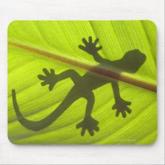 Gecko Mouse Mat