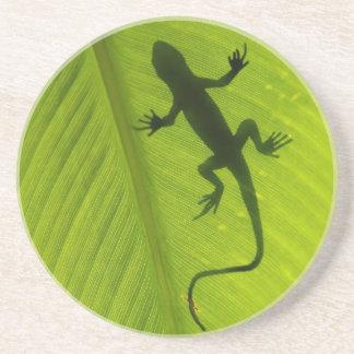 Gecko Silhouette Coaster