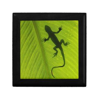 Gecko Silhouette Gift Box
