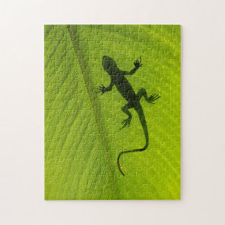Gecko Silhouette Jigsaw Puzzle