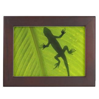 Gecko Silhouette Keepsake Box