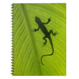Gecko Silhouette Spiral Notebooks