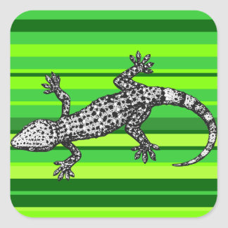 Gecko Square Sticker
