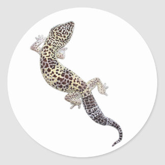 Gecko Stickers 01